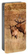 Elk And Mate In Rocky Mountain Meadow Portable Battery Charger