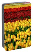 Endless Tulip Fields Portable Battery Charger