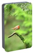 English Robin Erithacus Rubecula Portable Battery Charger