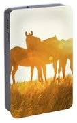 Equine Glow Portable Battery Charger