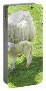 Ewe With Lambs Portable Battery Charger