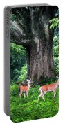 Fairy Tale Forest Portable Battery Charger by Karen Wiles