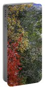 Fall Meets Winter Portable Battery Charger