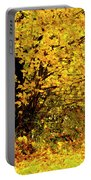 Fall To Grace Portable Battery Charger