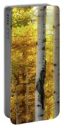Fall's Visitation Portable Battery Charger by Rick Furmanek