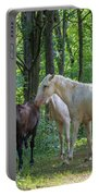 Family Of Horses Portable Battery Charger