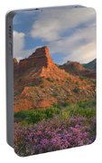 Feather Dalea, Caprock Canyons State Portable Battery Charger