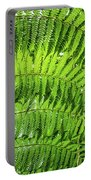 Fern Portable Battery Charger by Nick Bywater