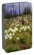 Field Of Bear Grass Portable Battery Charger
