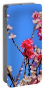 Pinks And Blues Portable Battery Charger