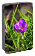 First Crocus Of 2019 Portable Battery Charger