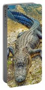 Florida Gator 2 Portable Battery Charger