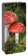 Fly Agaric  Portable Battery Charger