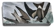 Fork Tailed Petrel, Thalassidroma Leachii By Audubon Portable Battery Charger