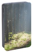 Forrest And Sun Portable Battery Charger