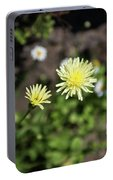 Forum Wild Portable Battery Charger