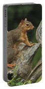 Foxy-2 Portable Battery Charger
