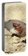 Gambel's Quail Dance Portable Battery Charger