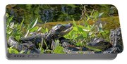Gator Brood Portable Battery Charger