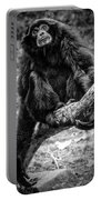 Gibbon Portable Battery Charger