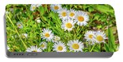 Goat Island Wild Daisies Maine Portable Battery Charger