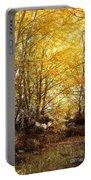 Golden Autumn Light Portable Battery Charger