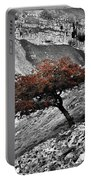 Gordale Scar Tree Portable Battery Charger