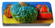 Graphic Autumn Pumpkins And Gourds Portable Battery Charger