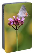 Gray Hairstreak In Sunshine 2019 Portable Battery Charger