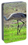 Grazing Sand Hill Crane Portable Battery Charger