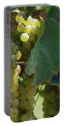 Green Grapes On The Vine 10 Portable Battery Charger