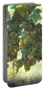Green Grapes On The Vine 17 Portable Battery Charger