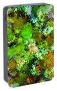 Green Scene Portable Battery Charger