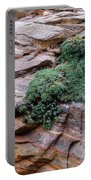 Growing From The Rock Terrain In Zion  Portable Battery Charger