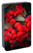 Happy Berries Portable Battery Charger