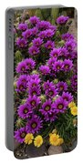 Hedgehog Cactus And Yellow Daisies Portable Battery Charger