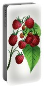 Hepstine Raspberries Hanging From A Branch Portable Battery Charger