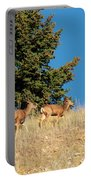 Herd Of Colorado Deer Portable Battery Charger