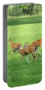 Herd Of Deer Portable Battery Charger