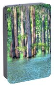 High Bayou Water Portable Battery Charger