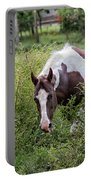 Horse Print 578 Portable Battery Charger