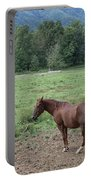 Horse Print 900 Portable Battery Charger