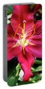 Hot Pink Day Lily Portable Battery Charger by Jessica Manelis