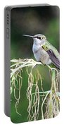 Hummingbird 105 Portable Battery Charger
