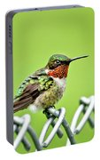 Hummingbird On A Fence Portable Battery Charger