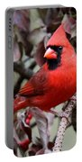 Img_0354-017 - Northern Cardinal Portable Battery Charger