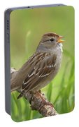 immature White-crowned Sparrow Portable Battery Charger