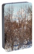 In Ninilchik A Moose Grazes In The Village In Late Winter Portable Battery Charger