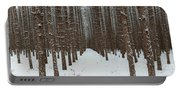 January Forest Portable Battery Charger