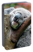 Koala Catching Zs Portable Battery Charger